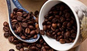 Einsteiger Espressomaschine