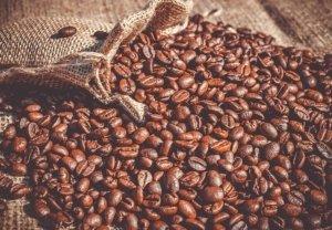 Der beste Kaffee beginnt bei der Auswahl der Bohnen